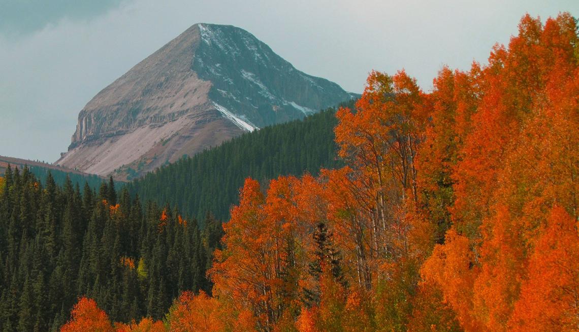 Colorado Fall Wilderness