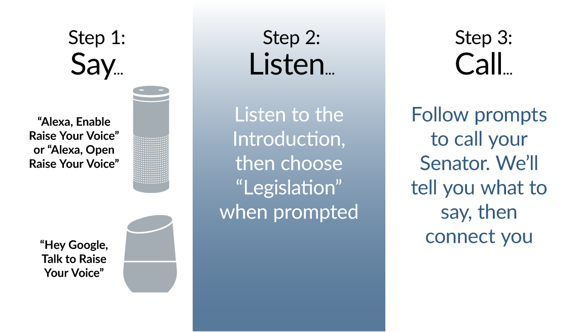 Raise Your Voice Infographic