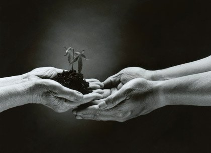 one person's hands giving a plant to another person's hands