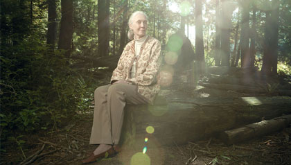 Jane Goodall, AARP The Magazine Inspire Awards 2012 Honoree