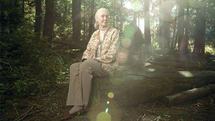 Jane Goodall, AARP The Magazine Inspire Awards 2012 Honoree