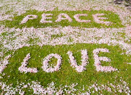 Cherry blossom used to spell out the word Peace and Love, on a playing field