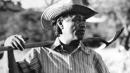 César Chávez (1927 - 1993), fundador de Unión de Campesinos de América (UFW), tiene una pala en sus hombros mientras trabajaba en el jardín de la comunidad de La Paz, California, 1975.