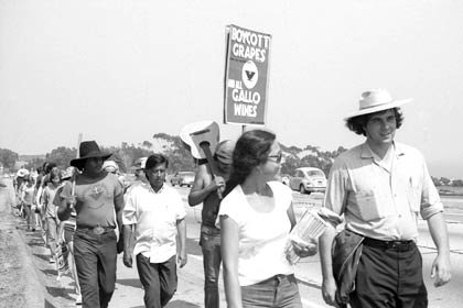 The United Farm Workers (UFW) 1,000 Mile March approaches Malibu, California, in the summer of 1975. César Chávez is visible in the second row of marchers. The march was a 59 day trek organized by the UFW, from the Mexican border at San Ysidro to Salinas and then from Sacramento south down the Central Valley to the UFW's La Paz headquarters at Keene, southeast of Bakersfield, California. Tens of thousands of farm workers marched and attended evening rallies to hear Chávez and organize their ranches.