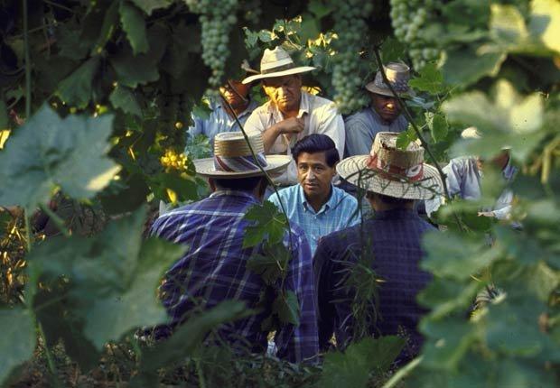César Chávez (centro) habla con recolectores de uva acerca del sindicato United Farm Workers, el 1 de marzo de 1968.