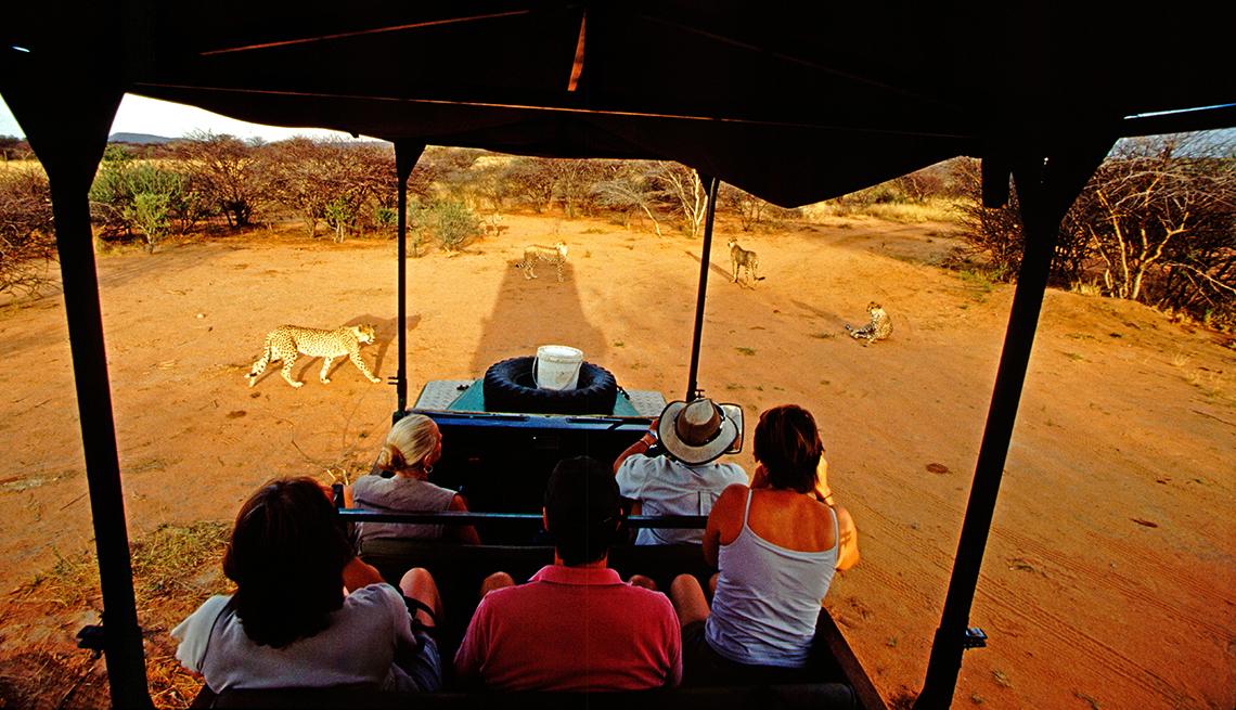 Pasa tus vacaciones explorando lo que te interesa - Safari en Namibia