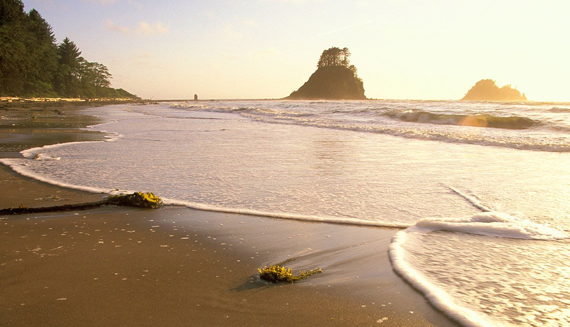 Ozette Beach, Washington