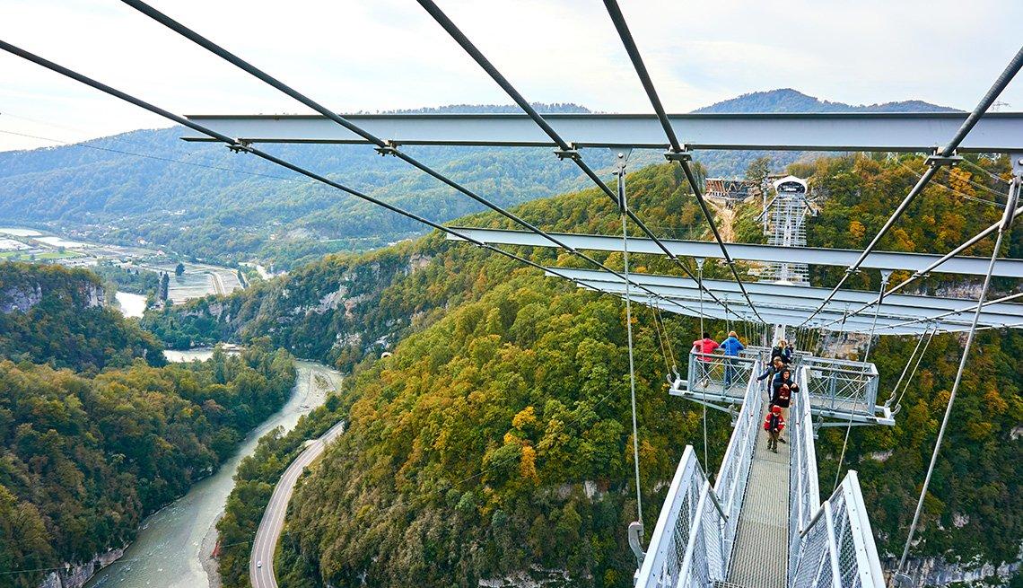 Puente suspendido sobre el Sochi National Park.