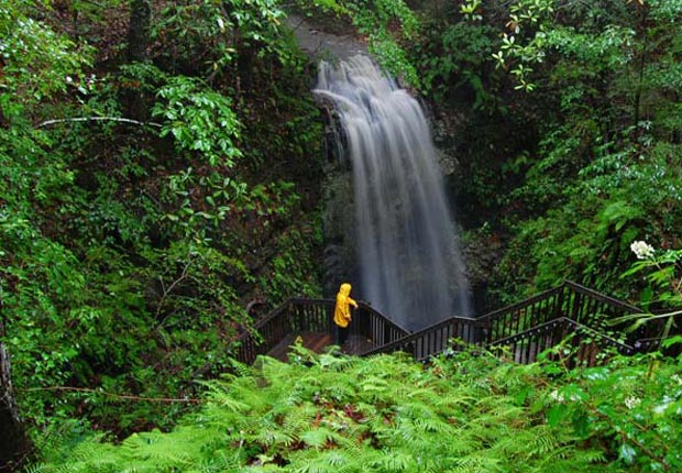 Falling Waters Waterfalls at Florida's Falling Waters State Park