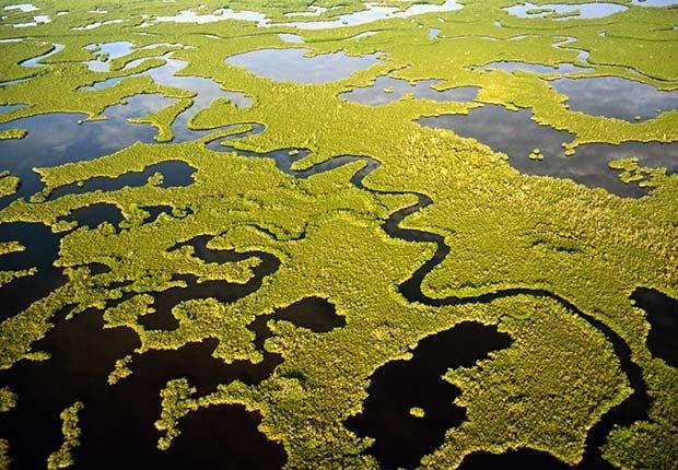 10 Maravillas Naturales de América - Los Everglades, Florida