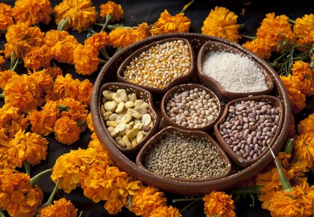 Beans and marigolds for Day of the Dead altar