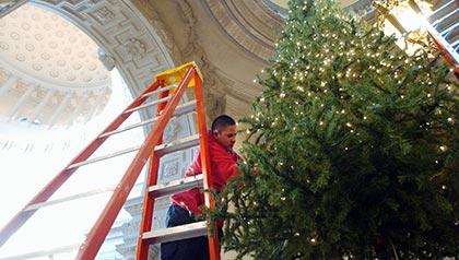 Ignacio Pérez instala las luces del árbol de Navidad dentro de la Alcaldía de San Francisco.