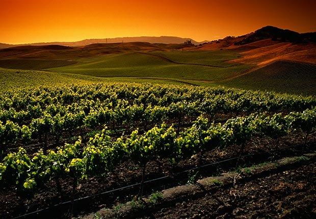 Los Valles de Napa y de Sonoma en California - 10 atracciones turísticas más populares en Estados Unidos