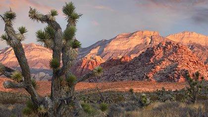 Rock Canyon Area National de Conservación, cerca de Las Vegas, Nevada