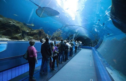 Visitors on Moving Walkway in Georgia Aquarium. Samantha Brown's must-see places in Atlanta.