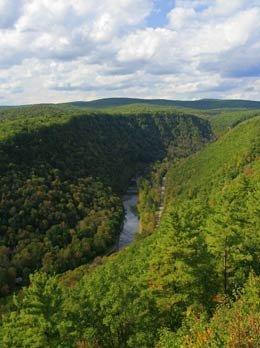 Canyon más verde de Estados Unidos, el Gran Cañón de Pennsylvania.