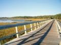 Cape Cod Rail Trail, MA  - Paseos en bicicleta.