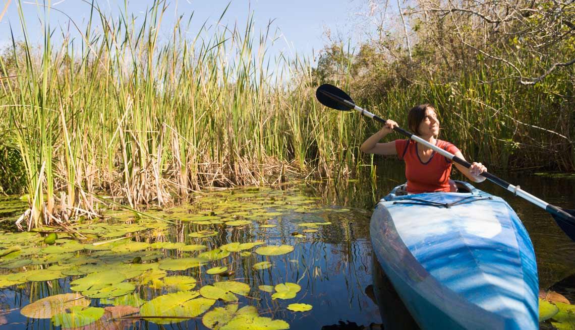 Everglades - Experiencias increíbles en los parques nacionales