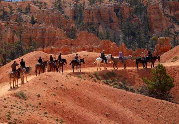 Personas a caballo en el Bryce Canyon National Park - Experiencias increíbles en los parques nacionales