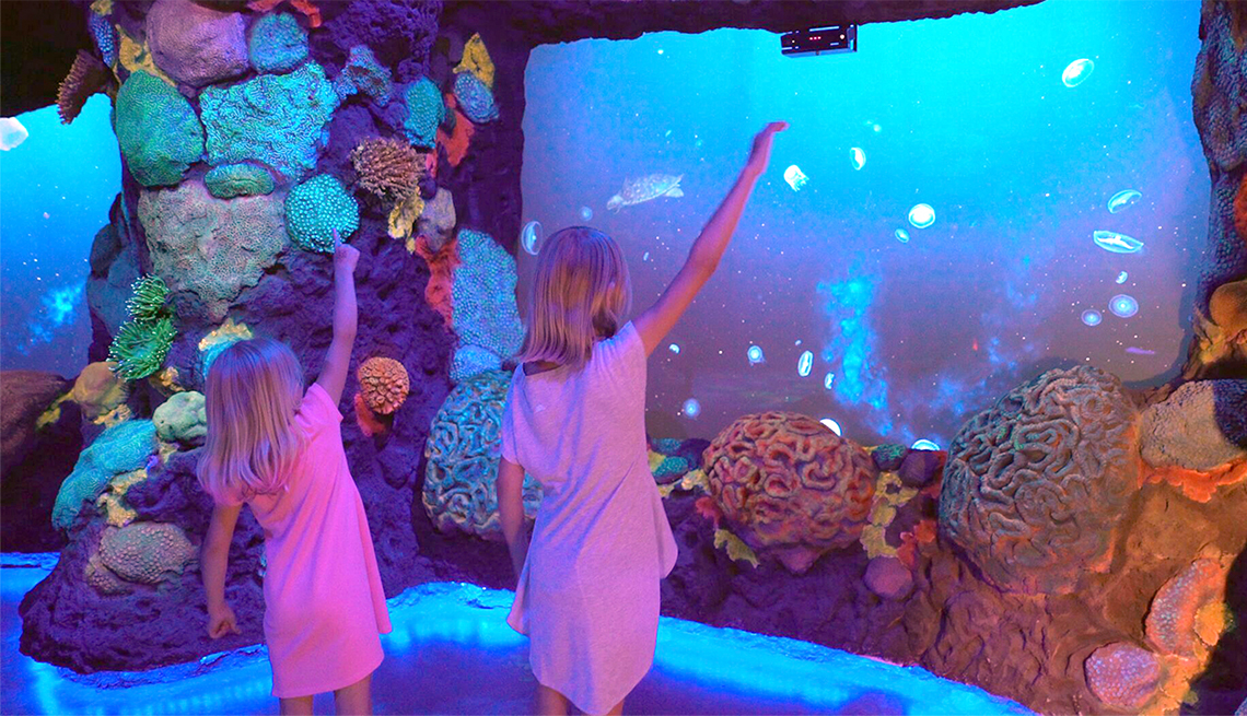 item 2 of Gallery image - Miñas observan un acuario