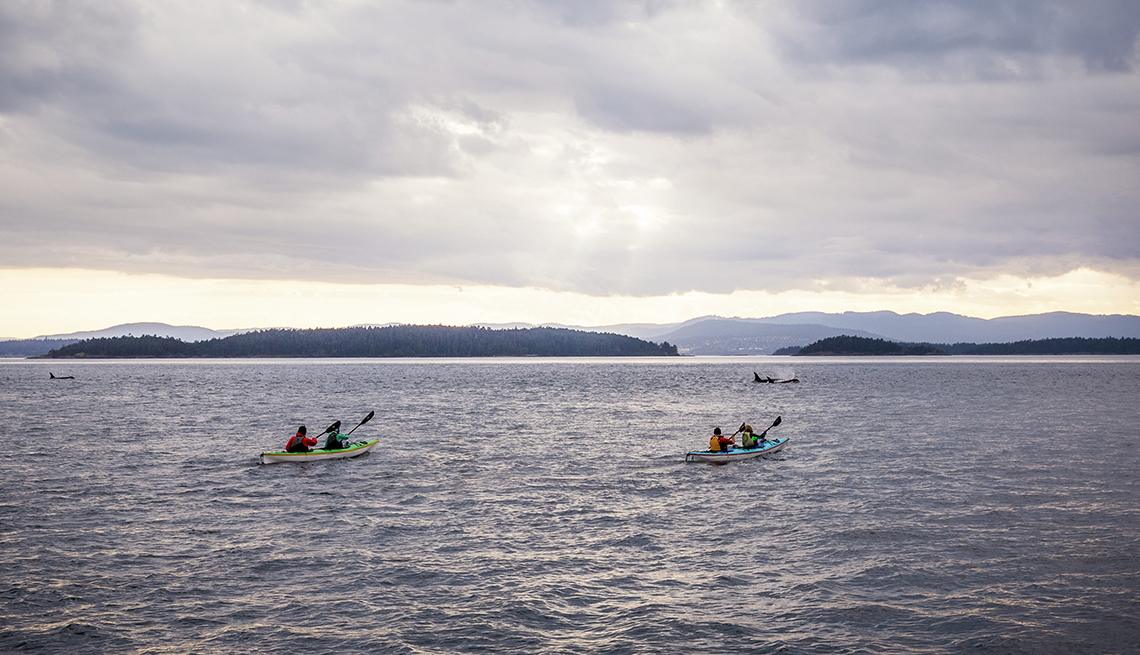 Grupo de personas en kayaks observando ballenas