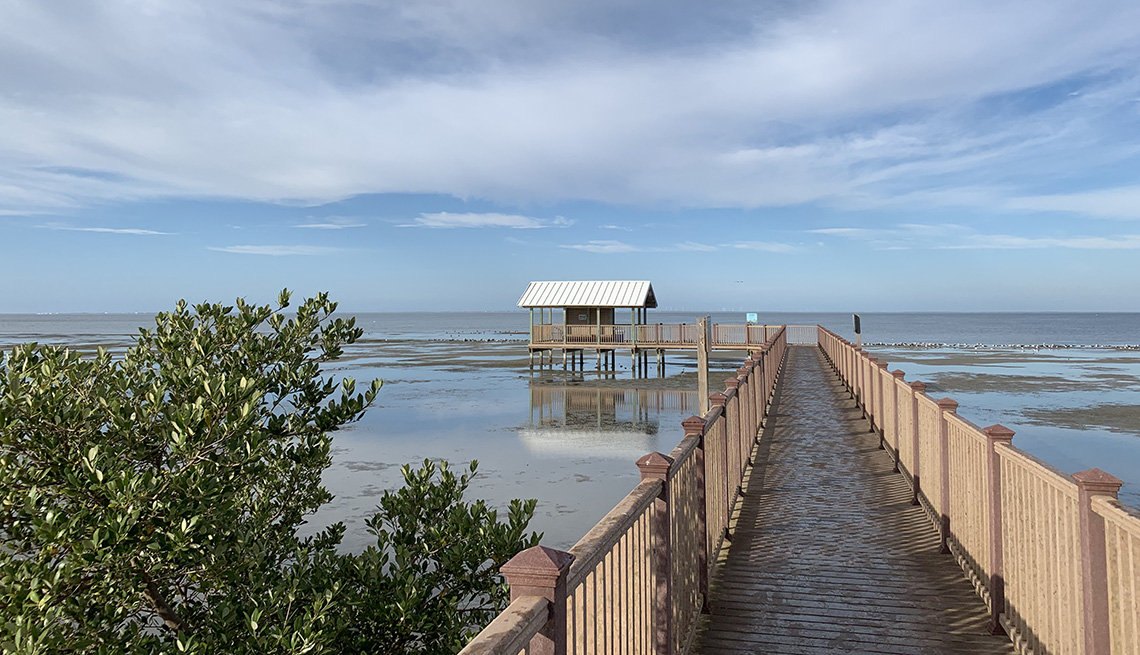 item 7 of Gallery image - Empty nature boardwalk on South Padre Island, Texas