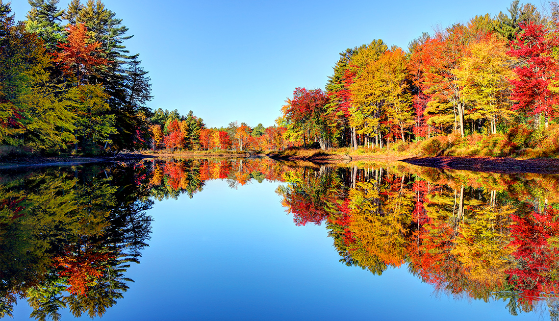 Fall Foliage Map 2020.Where And When To Spot Fall Foliage Year You