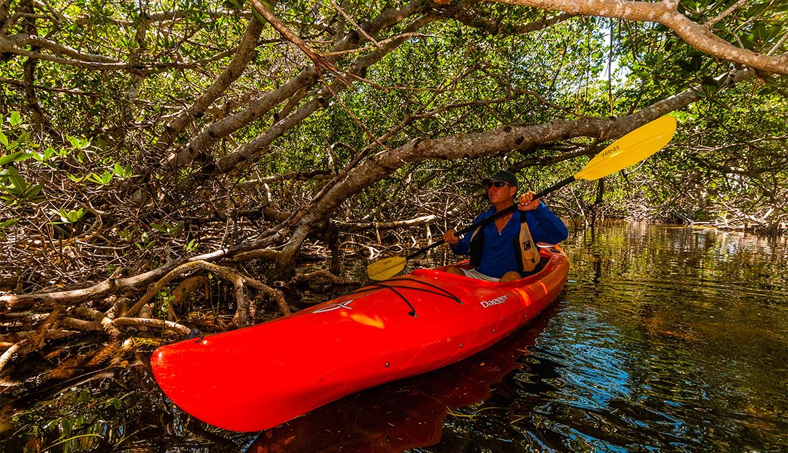 Hombre en kayak en un manglar de los Cayos de Florida