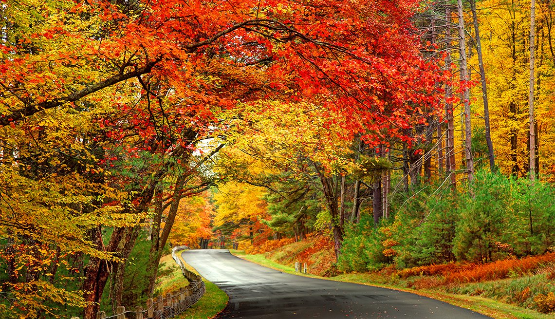 Scenic road in the Quabbin Reservoir Park area of Massachusetts