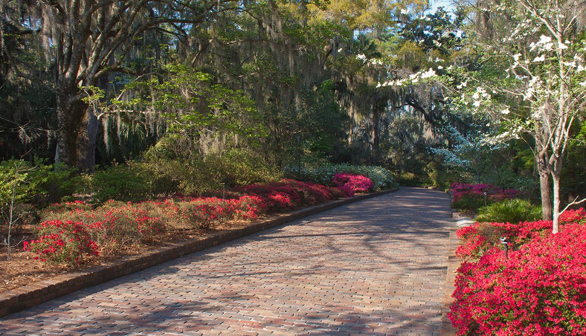 A walking path with red flowers on the sides in Tallahassee Florida