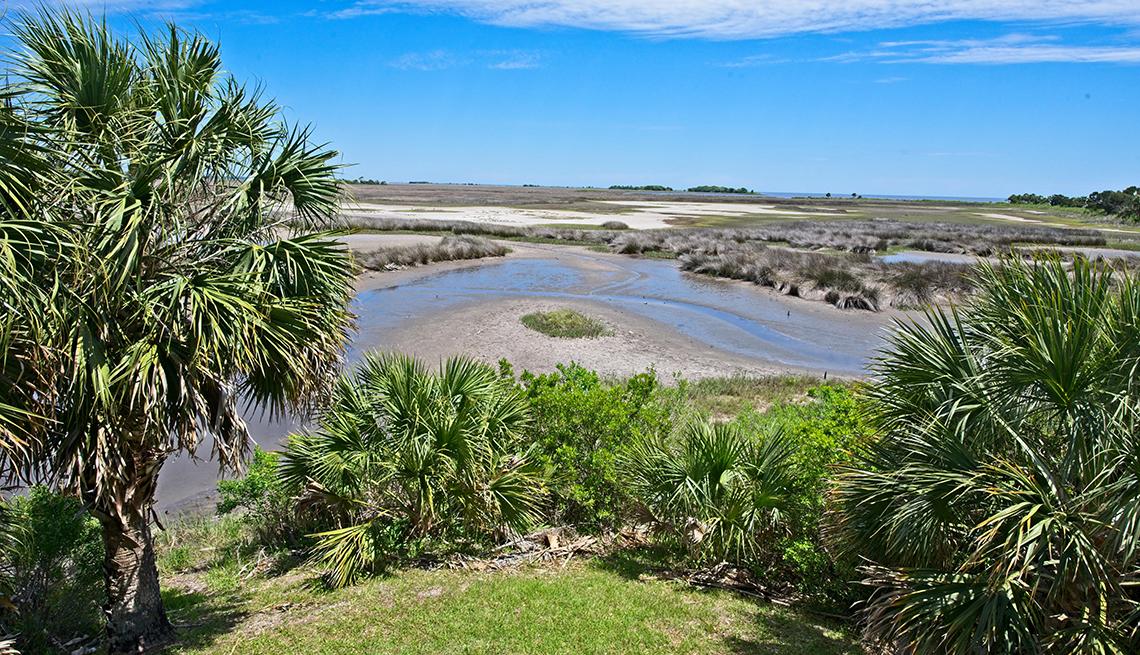 Área pantanosa en Wakulla Springs Florida