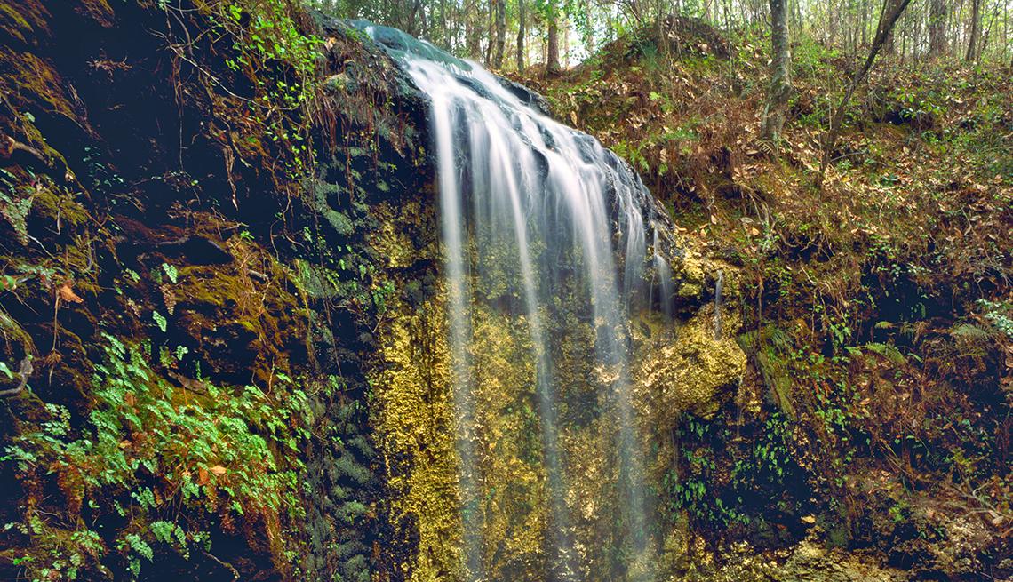 Caída de agua en Spring Falling Waters State Park