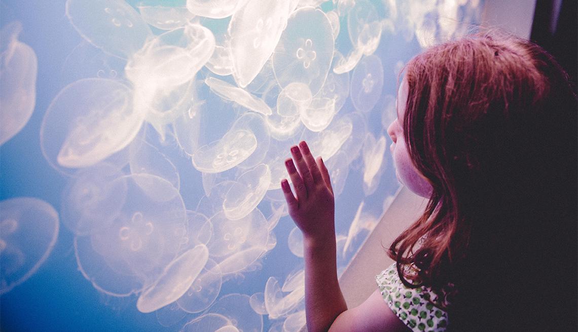 Niña viendo medusas en un acuario