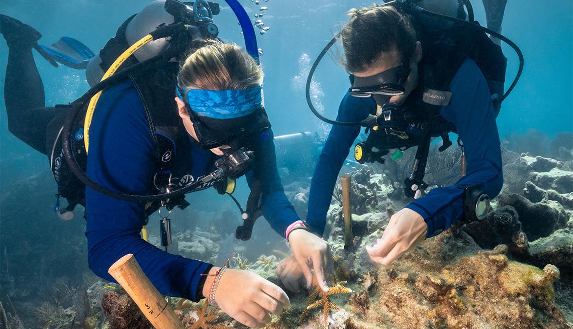 Dos buzos sumergidos restaurando un arrecife de coral para la Coral Restoration Foundation ™