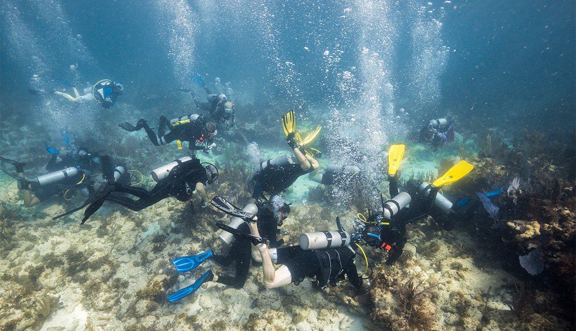 Buzos sumergidos en el evento Corapolooza para la Coral Restoration Foundation