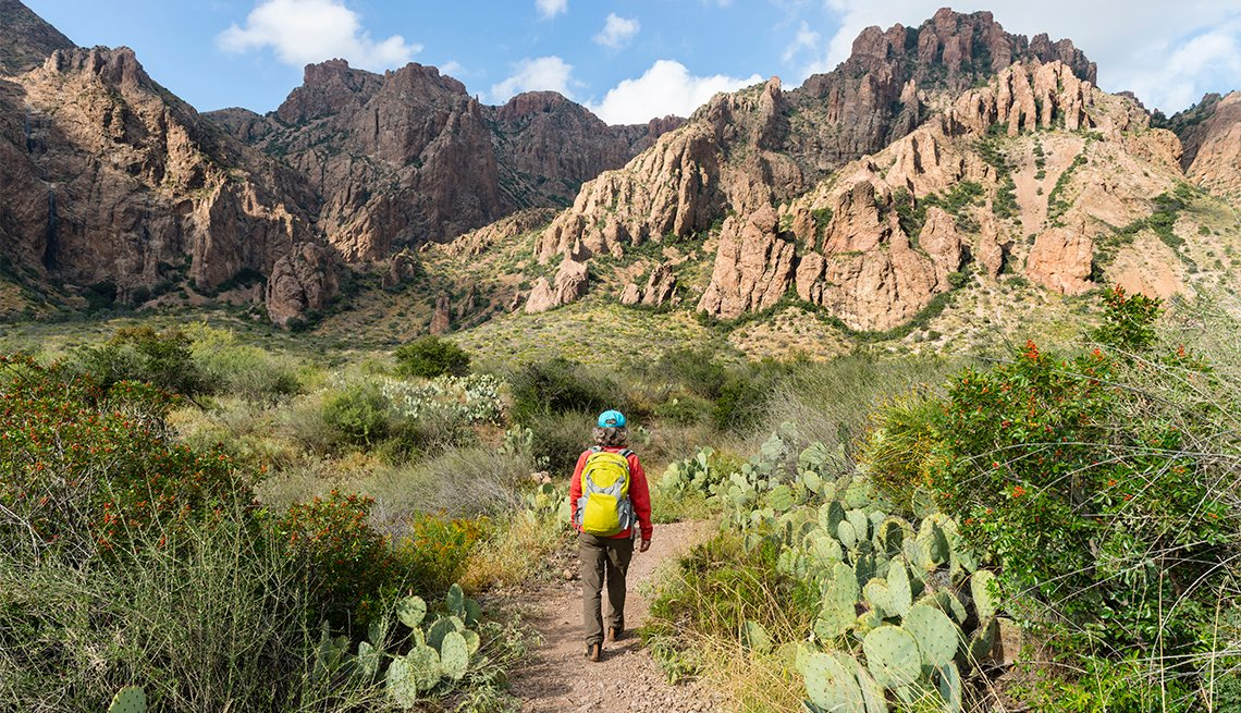 woman walking on trail trough cactus, yucca plant and rocks in Big Bend National Park, Texas