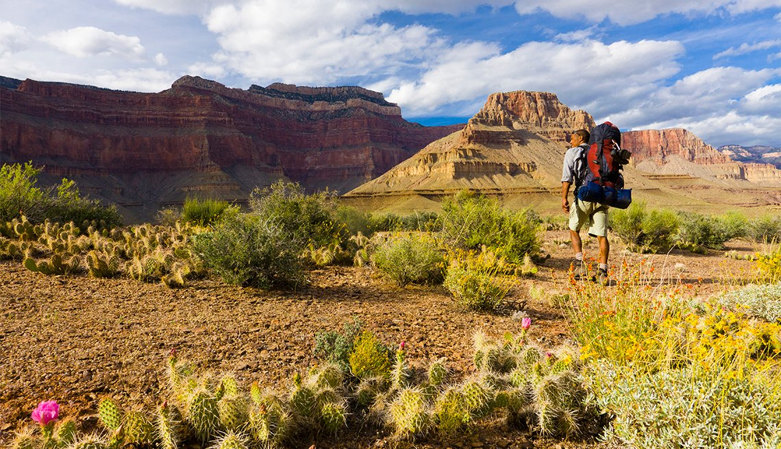 man backpacking in Grand Canyon National Park