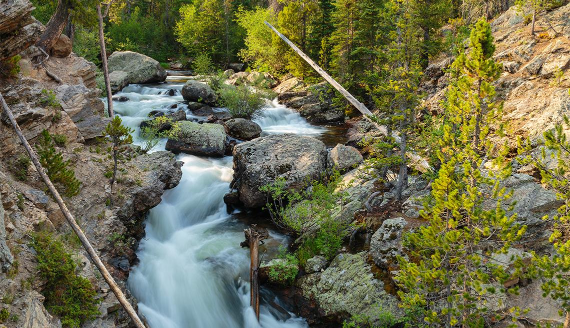 Caída de agua Adams Falls