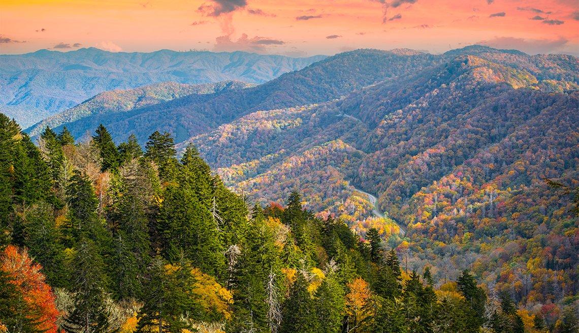 Montañas y árboles en una mañana de otoño