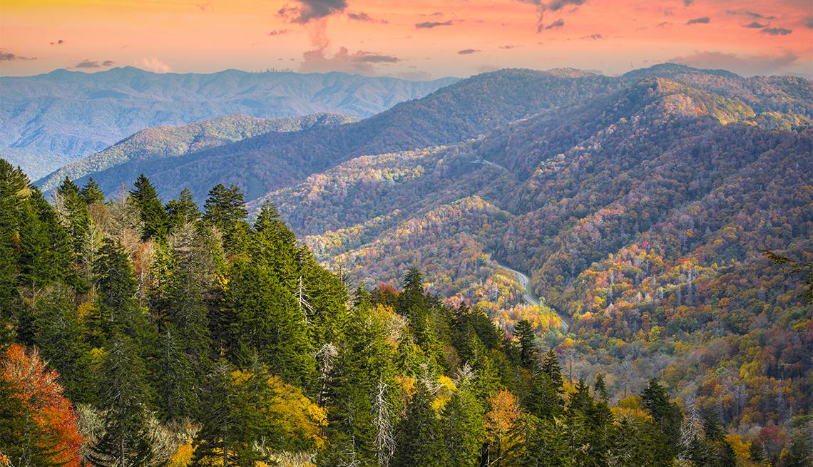 item 4 of Gallery image - Montañas y árboles en una mañana de otoño