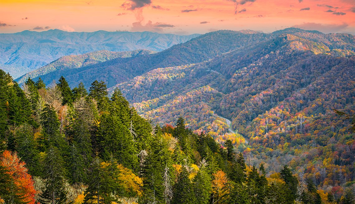 item 4 of Gallery image - Fall morning in the Great Smoky Mountains National Park