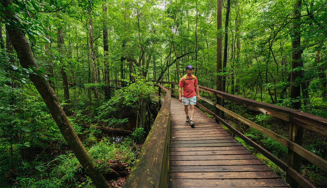 item 10 of Gallery image - A male hiker hiking the board walk loop trail in Congaree National Park, South Carolina