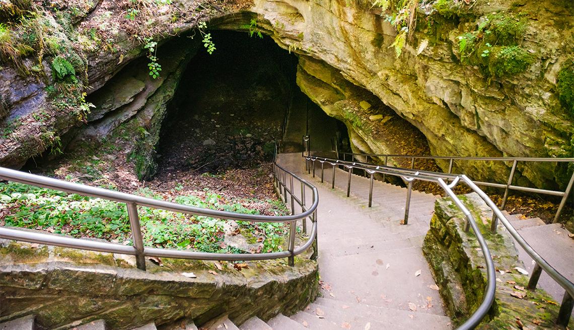 item 3 of Gallery image - Entrada en el Mammoth Cave National Park
