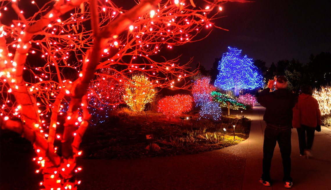 item 8 of Gallery image - The Denver Botanic Garden's holiday light display