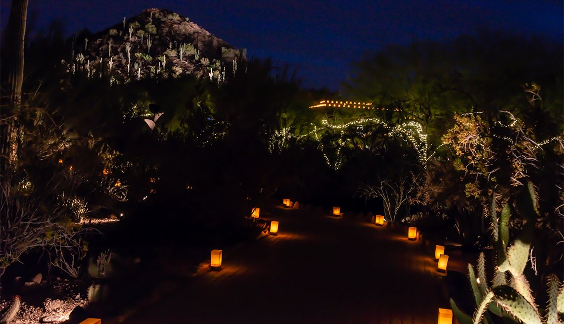 item 5 of Gallery image - Desert Botanical Garden Luminarias & Lights