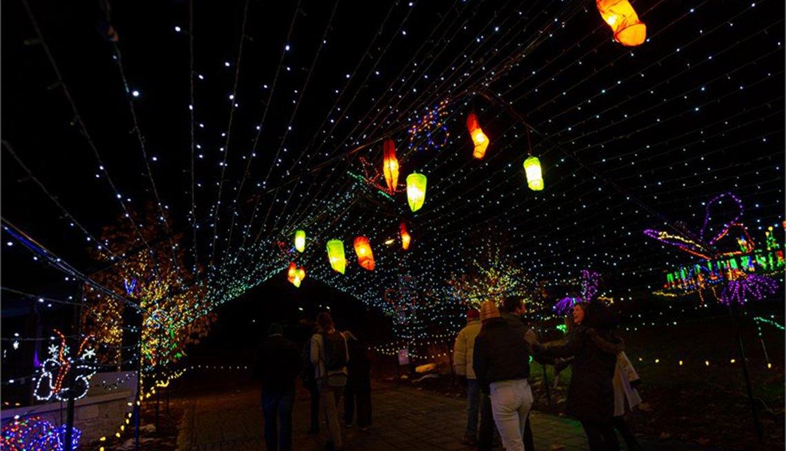 item 3 of Gallery image - Green Bay Botanical Garden lights