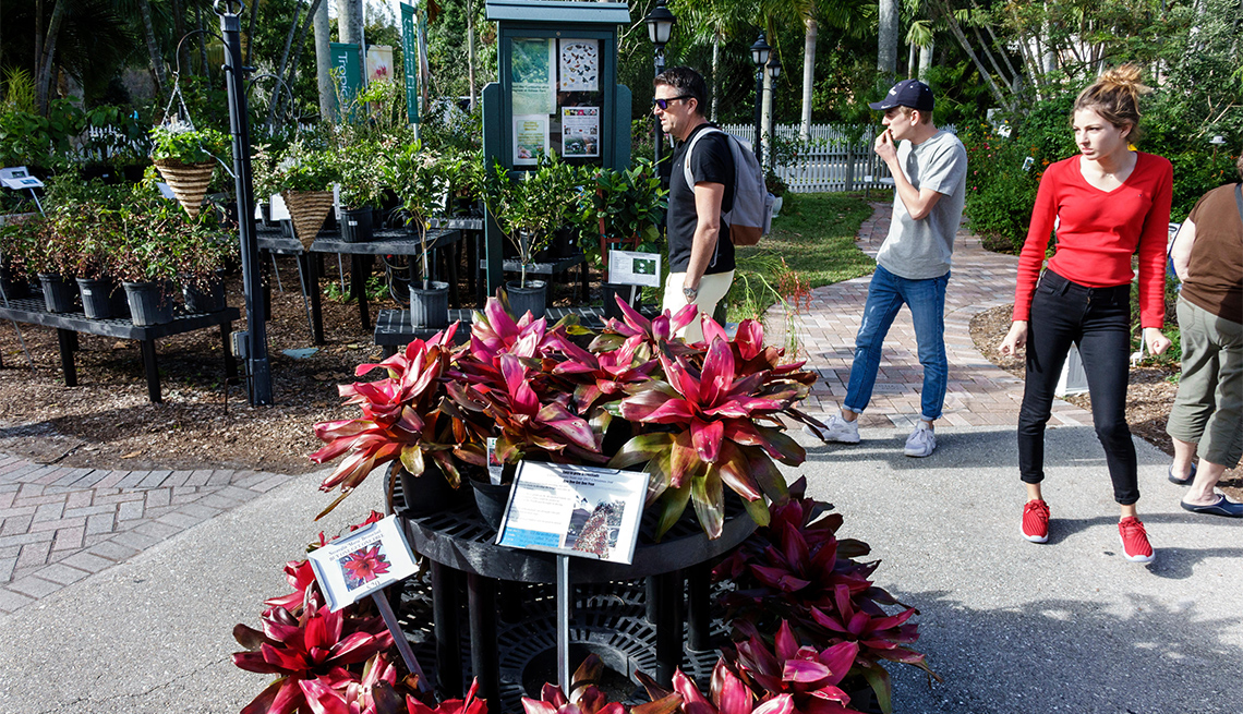 item 8 of Gallery image - Thomas Edison and Henry Ford Winter Estates