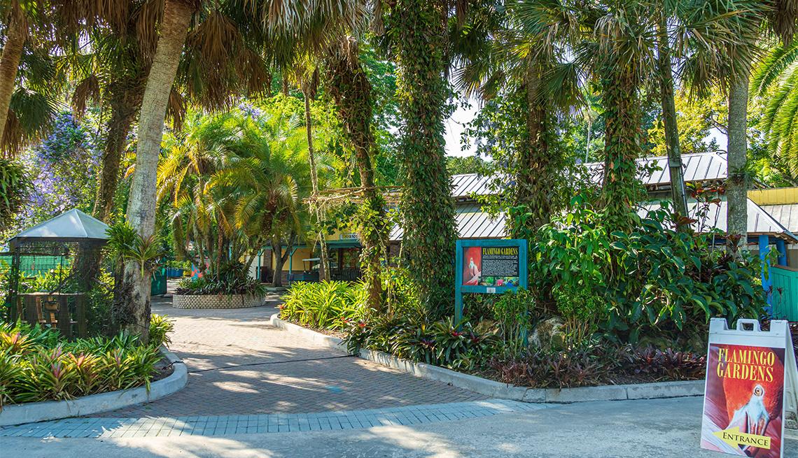 item 2 of Gallery image - Imagen de la entrada de Flamingo Gardens
