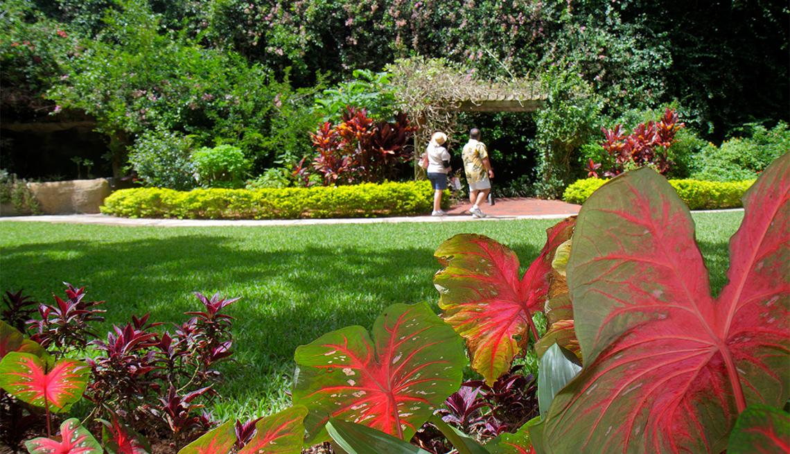 Dos personas caminan por un jardín florecido