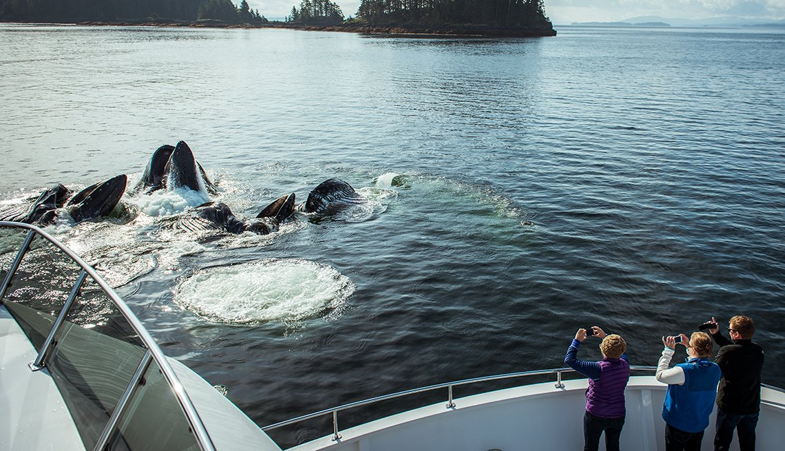 Tourists Photograph Whales from Alaskan cruise ship, Great American Cruises